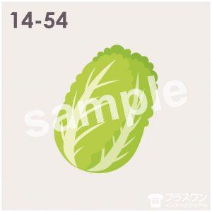 白菜のイラスト素材