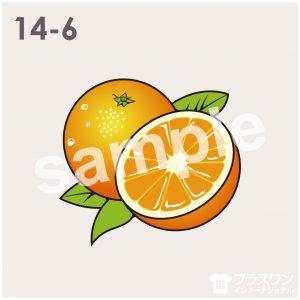 オレンジのイラスト素材