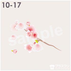 桜の花のイラスト素材